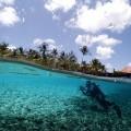 mam caribe (3)